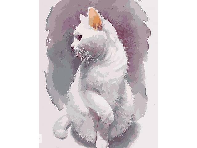 """купить бу Картина по номерам """"Хрупкий кот"""" 40*50см  KHO4181 в Одессе"""