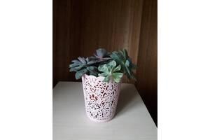 Офисные растения, стильно и эко