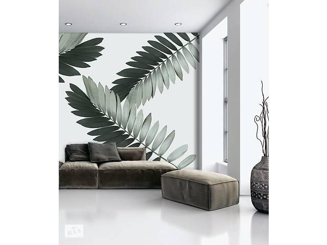 купить бу Рельефные фотообои дизайнерские для стен листья пальмы Замия Palm Zamia Furfuracea Mexican 465 см х 280 см в Киеве