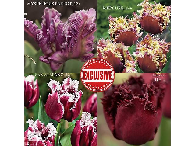 купить бу Тюльпаны набор Эксклюзив в Киеве