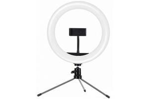 Держатель с кольцевым освещением для телефона кольцевая лампа блогера Joyroom JR-ZS229 AKL01 Черный (gr_014810)