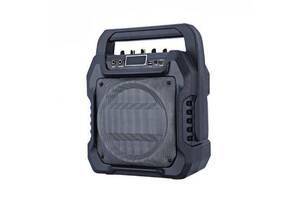 Колонка с микрофоном бумбокс Kronos NS-T90AC-MIC караоке FM-радио USB TF-слот Черный (par_t-90ac)