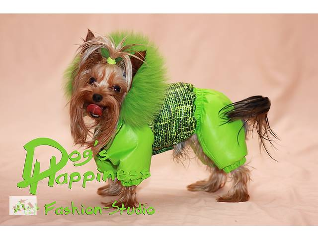 Одяг для собак, йорка, мопса, пінчера, французького бульдога, такси, ксоло, китайської чубатої.- объявление о продаже  в Харкові