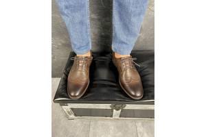 Мужские туфли кожаные весна/осень коричневые Vivaro 611 (Oxford)