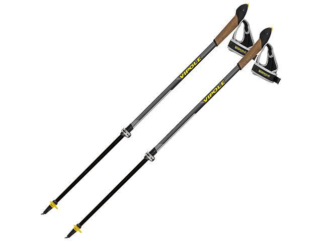 Палки для скандинавской ходьбы Vipole Instructor Vario Ql Dark Dlx