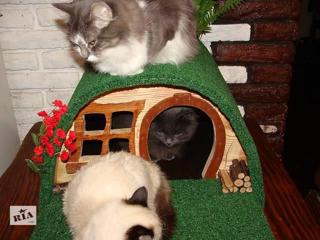 купить бу Дом - землянка для кота в Киеве
