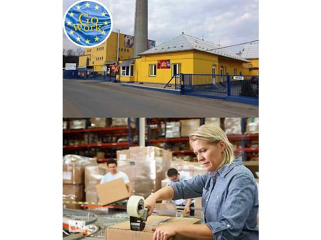 Упаковщики на завод по производству корма для животных в Чехии. GoWork