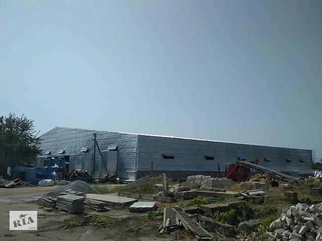 Строительство металлоконструкций ( ангаров, навесов, складов)- объявление о продаже   в Украине