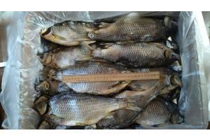 Продам рыбу сушёную