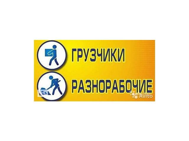Услуги  Разнорабочих Грузчиков