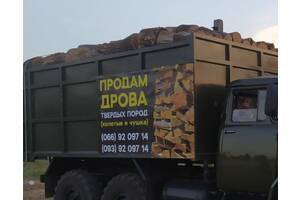 Продам дрова дубові (Господар)