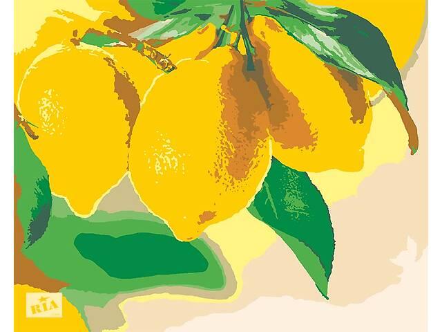 бу Картини за номерами Лимон Лайм Натюрморт Цитрусові лимонний Десерт Лимон лаймовий фреш кіт в Херсоне