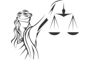 Господарські спори, юрист по господарським справам