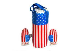 Детские боксерский набор подвесной перчатки и груша кожзам Danko Toys Америка. Спортивные подарки для детей