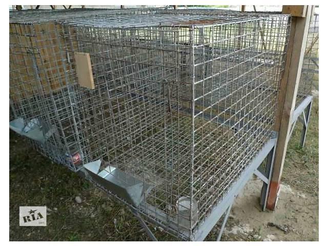 продам Клетки промышленные с кормушкой бу в Луцке