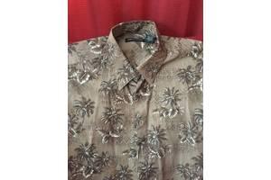 Нові чоловічі сорочки Pierre Cardin