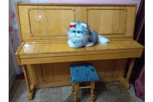 б/в Класичні фортепіано AMC