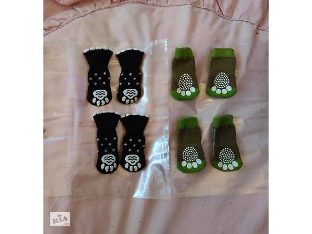 Носочки для мини-собачек-щенков в обувь, для дома, носки, одежда- объявление о продаже  в Полтаве