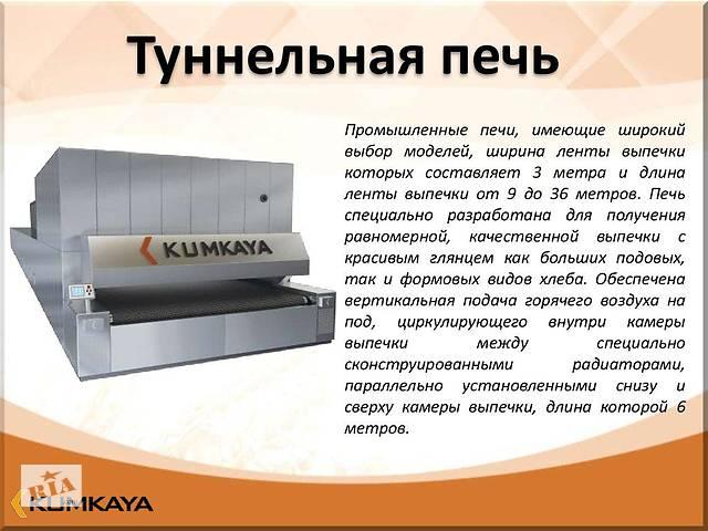 бу Одноярусная туннельная печь с сетчатым конвеером   TU 2518 Kumkaya в Киеве