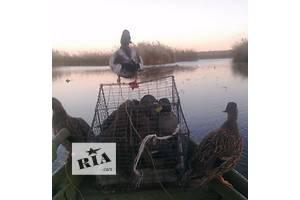Новые Чучелы уток для охоты