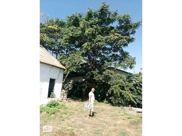 бу Покос травы, спил деревьев в Одессе