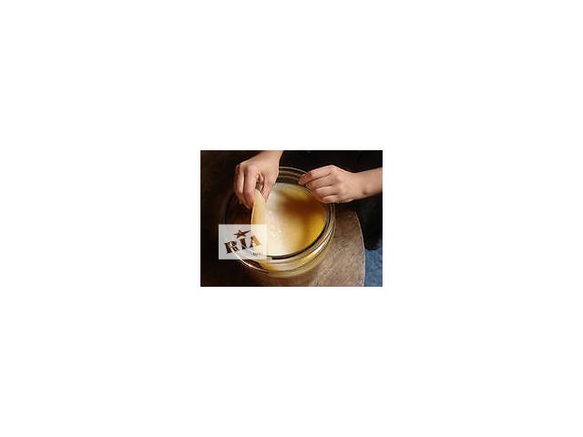 купить бу Продам чайный гриб, он же японский гриб, морской квас, чайная медуза, медузомицет,чайный квас, комбу в Херсоне