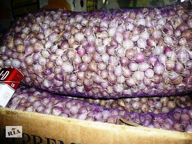 купить бу Продажа однозубки чеснока в Умани
