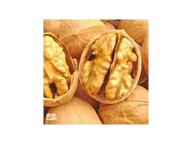бу Грецкий (волошский) орех очищенный высшего сорта в Фастове