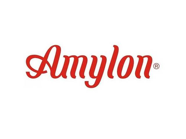 купить бу Клейковина пшеничная сухая (глютен) Amylon, Чехія  в Украине