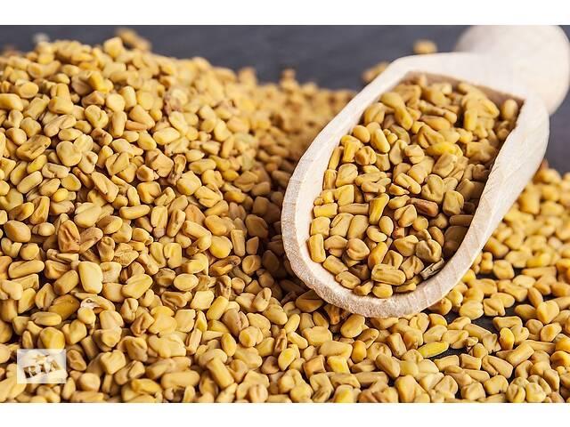 продам Пажитник сушеный семена (натуральный в/с) 1 кг бу в Виннице