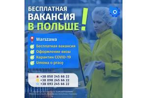 Работа в Польше на складе Интернет Магазина | Приглашения, виза в Польшу | Прямой работодатель