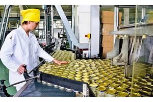 Работа в Польше 13 злотх/ч на консервный завод для женщин, мужчин и семейных пар