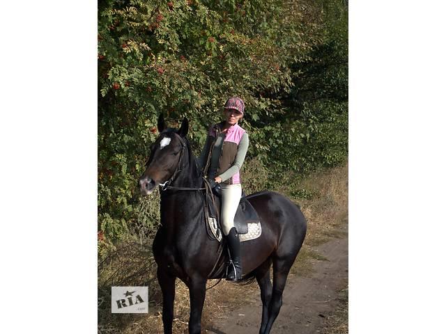 продам Работа с лошадьми (конюх-коновод) бу  в Украине