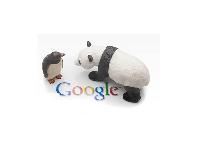 бу SEO продвижение сайтов, СЕО - оптимизация, раскрутка, Вывод в ТОП Гугл. Портфолио  в Украине