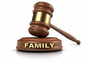Адвокат, юрист по семейным спорам (юридические услуги)