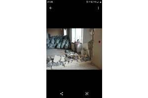 Демонтаж квартир та старих будинків
