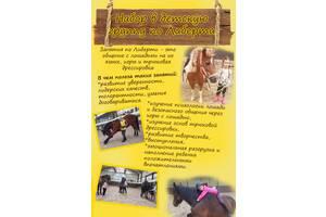 Детские групповые занятия с лошадьми