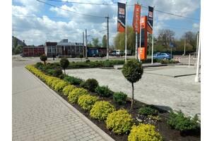 Ландшафтний дизайн, озеленення, приватне садівництво