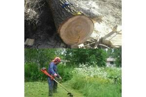 Спил деревьев, покос травы, расчистка участка, дрова
