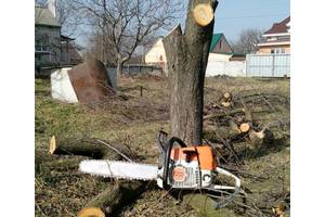 Спил деревьев,уборка территорий,выпиливание садов,выкарчевывание,омоложение.