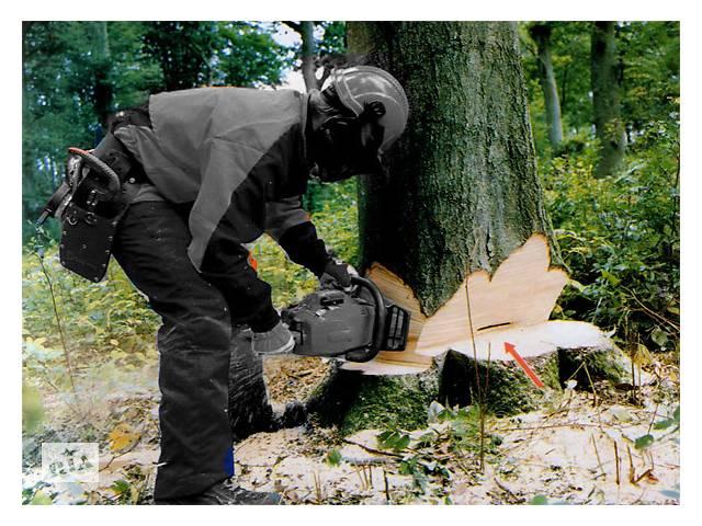 купить бу Валка, спил, деревьев. Работы с зелеными насаждениями. Дрова. в Доброполье