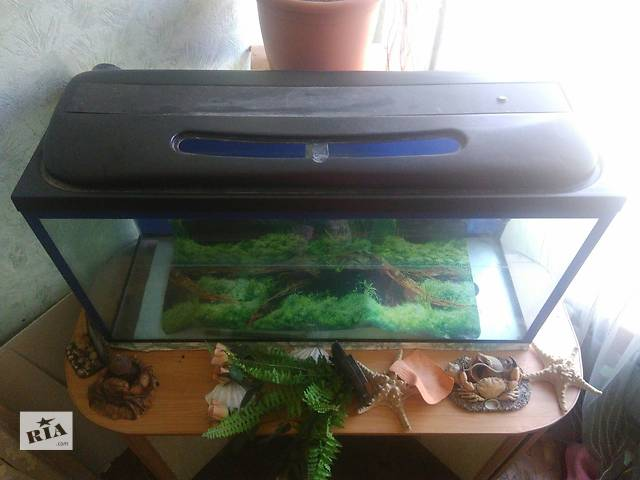купить бу В Киеве Дарница Срочно продам аквариум в Макарове