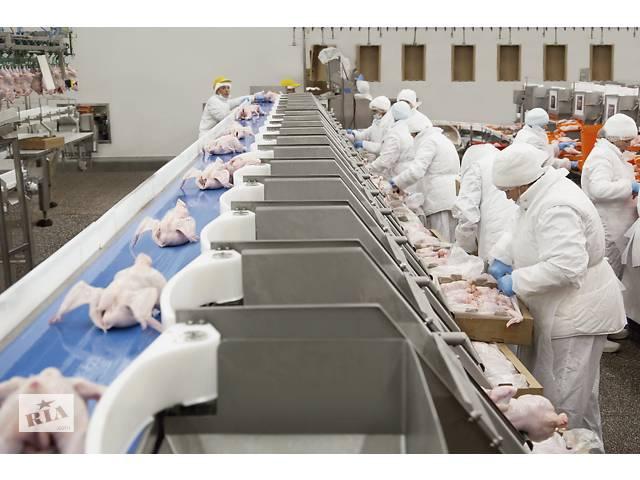 купить бу Работа.Рабочие на пищевое предприятие Hyza.Словакия  в Украине