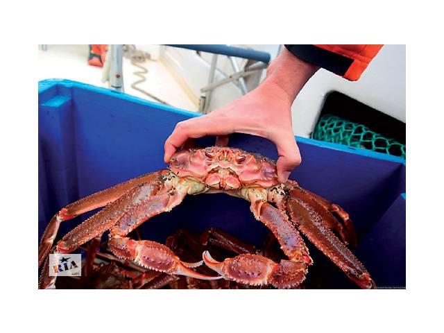 купить бу Работники на завод морепродуктов (крабы, креветки) в Норвегии  в Украине