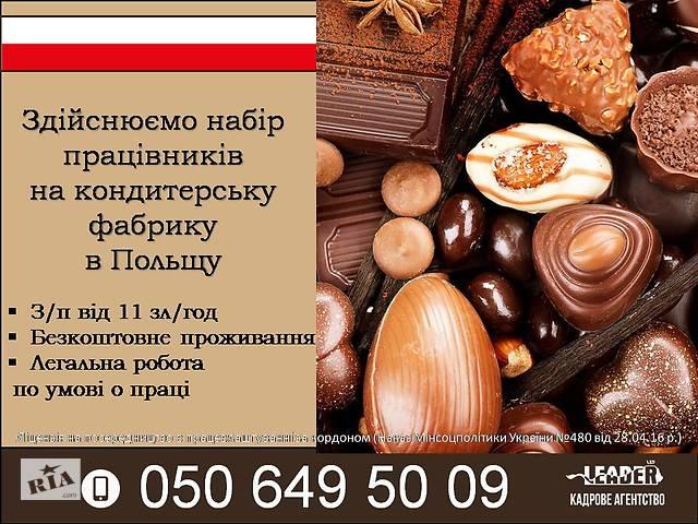 Робота на шоколадній фабриці в Польщі