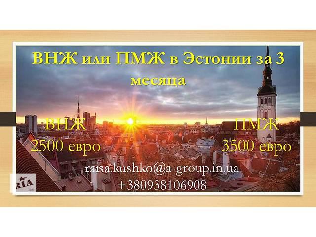купить бу Внж, пмж Эстонии  в Украине