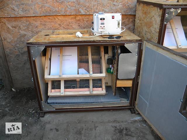 Инкубатор на 115 яиц окси. инкубатор бытовой от 115 до 3000 яиц- объявление о продаже  в Херсоні