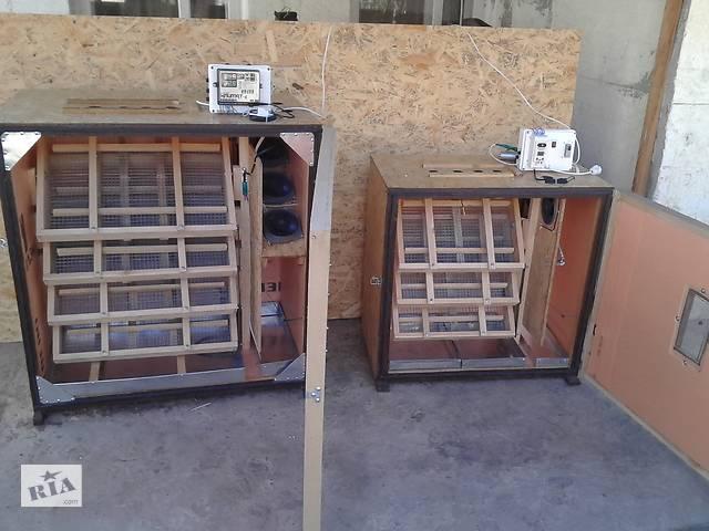 купить бу Инкубатор автоматический, инкубатор купить в Херсоне