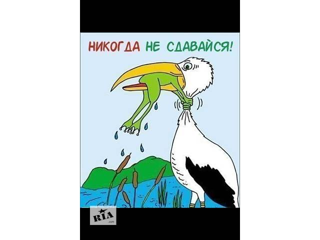 Ищу работу в сетевом бизнесе- объявление о продаже   в Украине