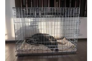 Клітка вольєр для собак ВОВК-1, №5, 92х63х72һ см посилена 5х6 мм!!!